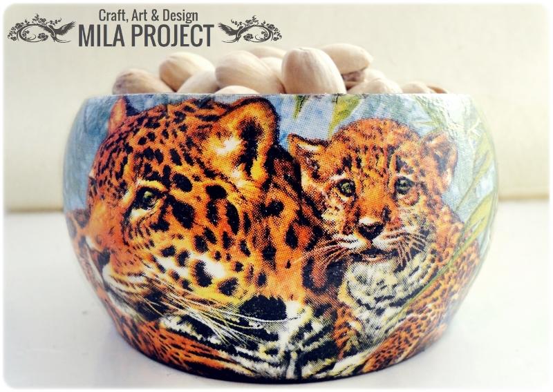 Miseczka Tigers 1
