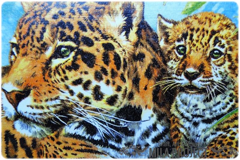 Skrzynka Tigers 2