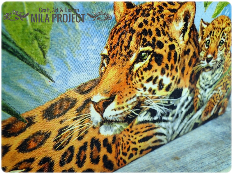 Skrzynka Tigers 3