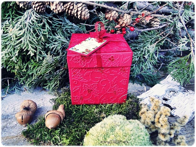 Bombka w pudełku Leśne skarby 4