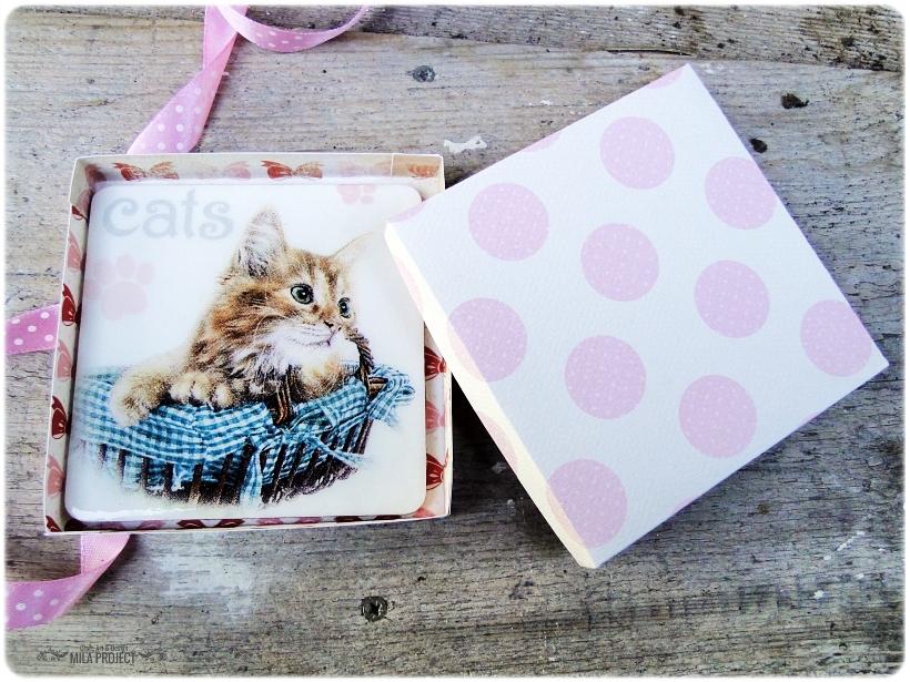 Magnes w pudełku Cat 4