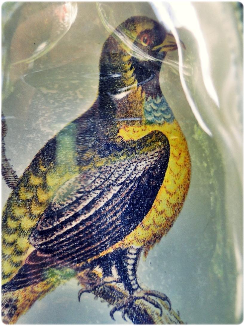 Butelka szklana piersiówka Muscicapa viridis 10