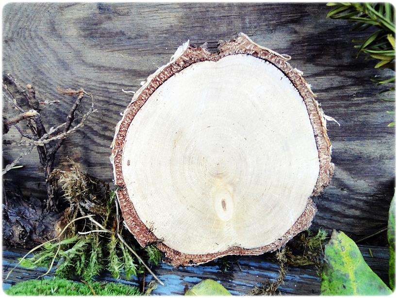 Dekoracja świąteczna na drewnie brzozowym Sarenki 5