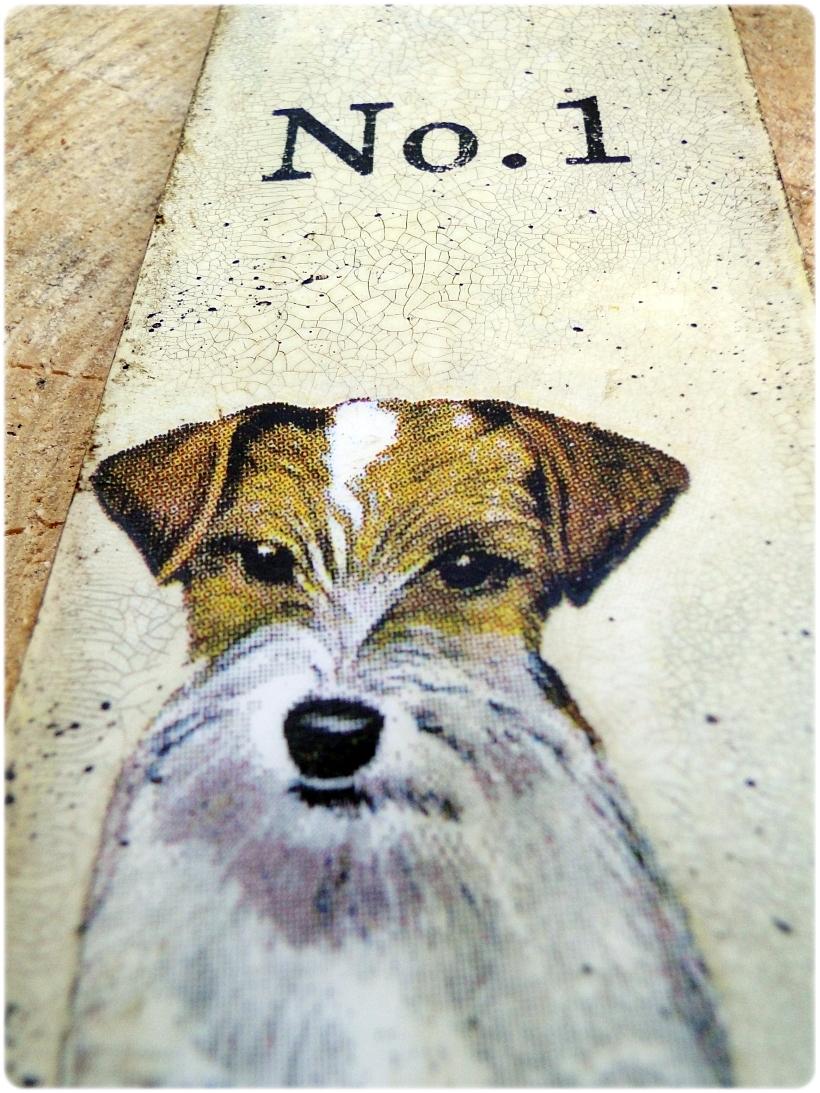 Zakładka do książki Jack Russell Terrier 3