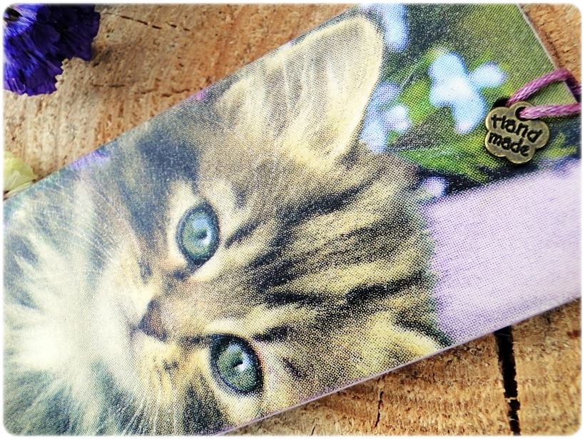 Zakładka do książki Kitten 3